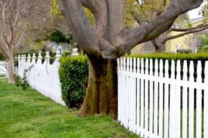 Pasos legales para levantar una pared medianera