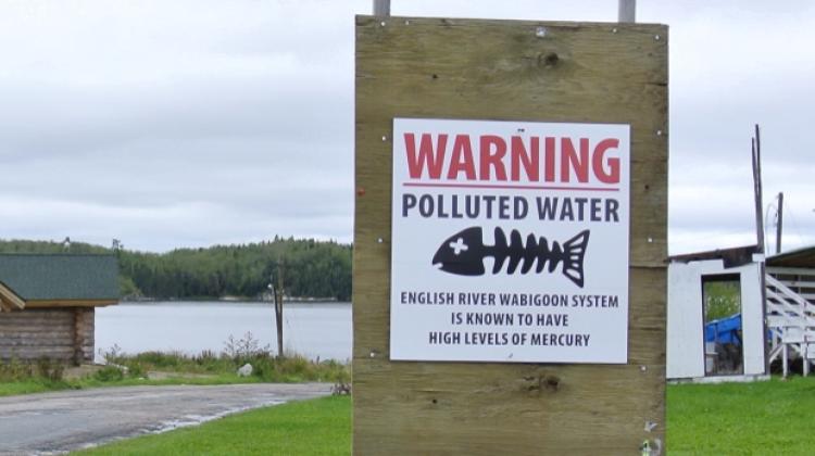 Cartel lucha contra la contaminación por mercurio