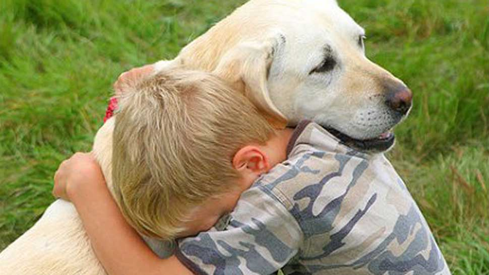 Perros de contención para víctimas menores de edad