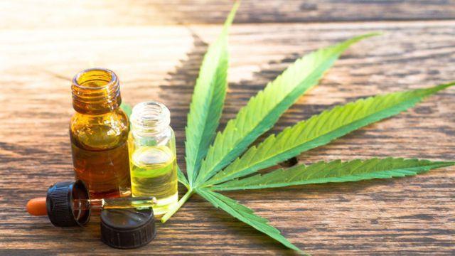 colombia-cómo-capacitan-a-los-licenciatarios-de-cannabis-medicinal